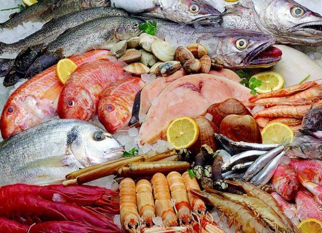 alimentos marinos